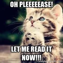 anticipation-cat-oh-pleeeeease-let-me-read-it-now